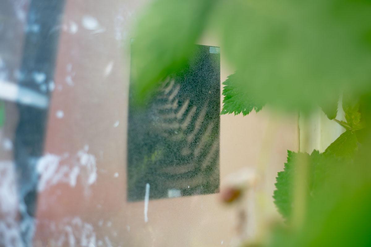stankovice-v zahrade-109