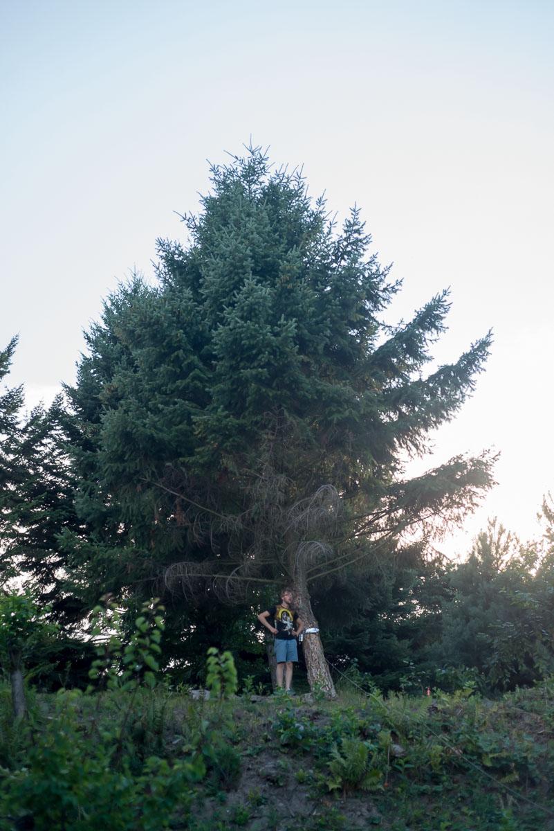 stankovice-v zahrade-2