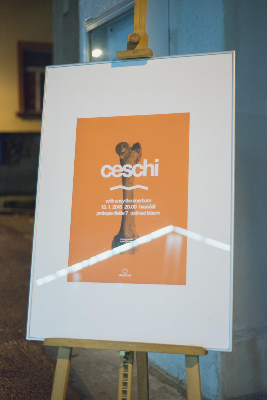 ceschi andy-1